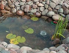 Ponds, Fountains and Aquatic Plants Buying Guide—MOST SIMPLE explanation of how to water garden (Lowe's) Water Garden Plants, Garden Pond, How To Do Meditation, Dream Water, Side Yard Landscaping, Pond Fountains, Water Pond, Lily Pond, Aquatic Plants
