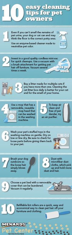 """Keep a clean home with these 10 easy cleaning tips for pet owners. <a href=""""http://www.menards.commain/c-19356.htm?cm_mmc=pinterest-_-social-_-petcenter-_-pet-storage-and-cleaning"""" rel=""""nofollow"""" target=""""_blank"""">www.menards.com...</a> http://www.menards.commain/c-19356.htm?cm_mmc=pinterest-_-social-_-petcenter-_-pet-storage-and-cleaning&crlt.pid=camp.jrYGIcjDmXuW&utm_content=bufferfa5a8&utm_med…"""