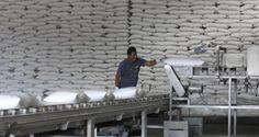 México y Estados Unidos no logran acuerdos sobre exportaciones de azúcar