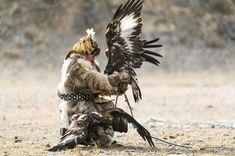 Ancient partnership Photo by Tracy Liu — National Geographic Your Shot National Geographic Photos, Your Shot, Bald Eagle, Amazing Photography, Shots, Bird, Animals, Animales, Animaux