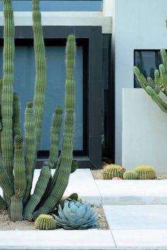 front yard landscape design 12 Enviable Desert Landscaping Ideas Hunker landscapegardendesigners is part of Desert garden - Modern Landscape Design, Garden Landscape Design, Modern Landscaping, Front Yard Landscaping, Backyard Landscaping, Landscaping Ideas, Desert Landscape, Backyard Ideas, Hydrangea Landscaping