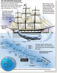 Remains of an Nantucket whaling ship with a poignant tie to the book Moby-Dick have been discovered on a remote reef almost 600 miles northwest of Honolulu. The Two Brothers is the first wrecked Nantucket whaler to be discovered, and the.