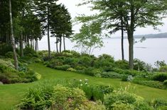natural shade garden GREEEN