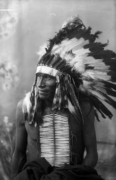 Joseph White Bull (the son of Makes Room) - Mniconjou/Hunkpapa - 1891