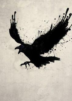raven bird odin hugin munin mythology color stains spatter Animals