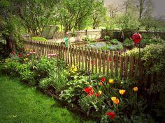 Kitchen vegetable garden | jardin potager | Bauerngarten im Chiemgau bei Höslwang von Gimlis Bilder