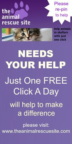 DAILY REMINDER: The Animal Rescue Site is having trouble getting enough people to click on it daily so they can meet their quota of getting FREE FOOD donated every day to abused and neglected animals in their shelters. It takes less than a minute! Copy,paste CLICK ON: theanimalrescuesite.com/clickToGive/home.faces?siteId=3# Click on the purple tab. Done! It takes less than a minute and Every click gives about .6 bowls of food to sheltered dogs. Every Day. We can do this!