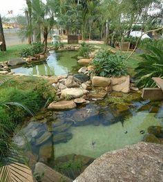 Ponds backyard backyard pond landscaping small gardens how to add fish to a backyard garden pond