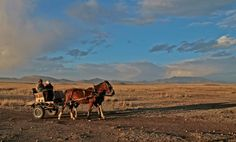 The Karoo, South-Africa BelAfrique - Your Personal Travel Planner www.belafrique.co.za