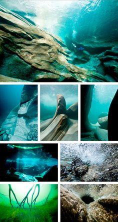 MARK HILLESHEIM UNDERWATER PHOTOGRAPHY Underwater Photography, Digital Photography, Underwater World, Under The Sea, Bedroom Ideas, Career, Photographs, Aqua, Mermaid