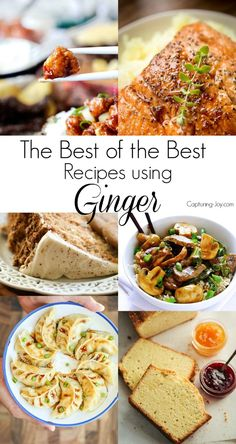 20 of the Best Recipes using Ginger from main dish to appetizer to dessert.
