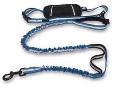 Smart 3-in-1 Design Hands Free Dog Leash with Accessory Pouch - Premium Quality Nylon 4FT Length Double Handles and Bungee for Great Control - Jogging Dog Leash for Medium to X Large Dogs - CORAL BLUE ^^ Awesome dog product. Click the image : Dog leash