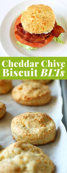 This cheddar chive biscuit BLT sandwich is going to be your new favorite lunch.  | honeyandbirch.com