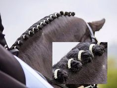 Diamante Horse Plaiting Bands Dressage 5 PK by EsemeeDesigns, £11.50