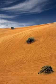 Desert beautiful nature / Playing with colors / breath taking view / hot sands
