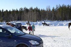 Kouluharjoituskisat 16.3.2013, Sinettä.