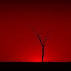 a beautiful sunset. Luis Mariano, I See Red, Red Pictures, Simply Red, Amazing Red, Red Rooms, Red Aesthetic, Shades Of Red, Beautiful Sunset