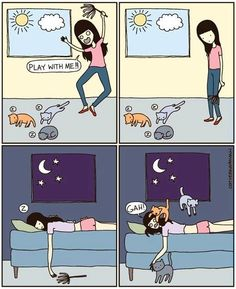 Nocturnal cats cartoon via Namaste Cafe at www.Facebook.com/NamasteDharmaCafe