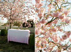 DIY ombre tablecloths