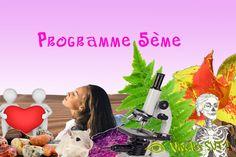 Le programme 5ème http://www.vivelessvt.com/