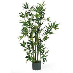 Nearly Natural 4 ft Silk Plant - Home - Home Decor - Decorative... ($49) ❤ liked on Polyvore featuring home, home decor, floral decor, nearly natural, nearly natural silk plants and nearly natural silk flowers