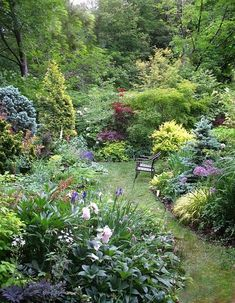 A quiet space -- which works even though there are lots of different plants. - A quiet space — which works even though there are lots of different plants…. Back Gardens, Outdoor Gardens, Amazing Gardens, Beautiful Gardens, Cottage Garden Design, Design Jardin, The Secret Garden, Garden Types, Different Plants
