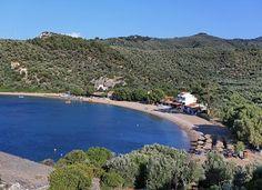 Tarti - Lesbos   http://lesbos-eiland.webs.com