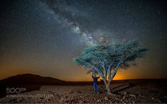 Under the tree  www.Telhami.com  Camera: NIKON D750  Join the Milky Way Group http://ift.tt/2sf2DTT and share your Milky Way creations or findings with the world! Image credit: http://ift.tt/2i7lFpc Don't forget to like the page or subscribe for more Milky Imagery!  #MilkyWay #Galaxy #Stars #Nightscape #Astrophotography #Astronomy
