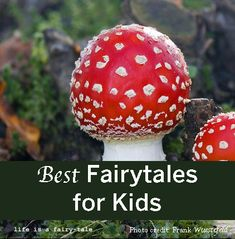 huge list of ideas --> Fairy Tales: Picture Books, Chapter Books, and Writing Ideas Reading Activities, Teaching Reading, Learning, Tales For Children, Fairy Tales For Kids, Best Fairy Tales, Writing A Book, Writing Ideas, Writing Inspiration