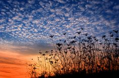 http://ns1209.hubpages.com/hub/Most-Beautiful-Sunsets