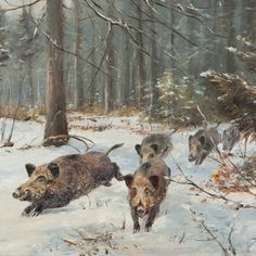 This oil painting by the German animal and hunting painter Willi Lorenz is a typical work by this popular artist. A running herd of wild boars is ...