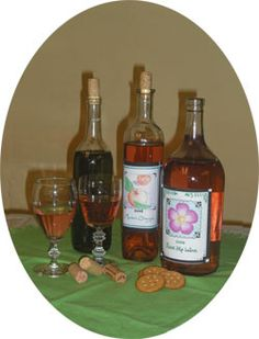 Backwoods Home  Making Delicious Unthinkable Wines- I really want to try the Rose Hip and the Green Tea wine recipes