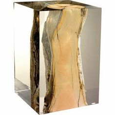 Birch trapped in lucite table  http://www.dalliancedesign.com/2011/11/living-room-inspired-by-my-new-over-dye.html?m=0