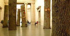 Beat, an installation by Anya Gallaccio, at Tate Britain