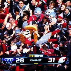 I attended Washington State University for 4 (too short) years. Although the Cougs only won 9 games total when I was a student, this win alone erases all those terrible defeats! Win or lose, I'll always be a Coug.