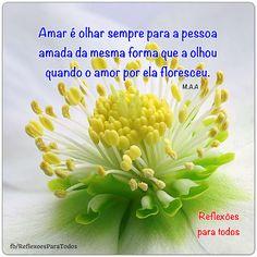 #Amar é .. #Mensagem de #reflexao