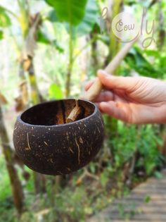 Natural Coconut Shell Spoon by HolyCowproducts on Etsy