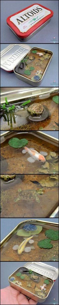 Miniature Koi and Turtle Altoids Pond by eve