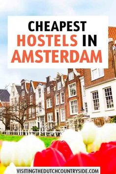 Cheapest Hostels In Amsterdam - - Backpacking Europe, Road Trip Europe, Europe Travel Guide, Travel Guides, Budget Travel, Guide Amsterdam, Amsterdam Travel, Visit Amsterdam, European Travel Tips