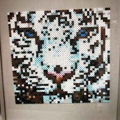 Tiger perler beads by  perlerking604