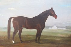 THOMAS J. SCOTT (AMERICAN/KENTUCKY 1824-1888)  George Wilkes.  1875 Ashland Park Stock Farm, Lexington Kentucky. Oil on canvas 22 1/8 x 27 1/4 inches  A beautifully renderedportrait of Kentucky's mostfamous trotter, George Wilkes. Wilkes is responsible for putting Kentucky on the map for harness racing. In the background we can see the barn of the Ashland Park Stock Farm, built across the road from the Henry Clay estate.  Michael Hall Antiques  #fineart #art #painting #antique #antiques