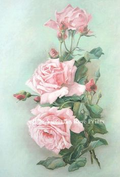 Print FREE SHIP Pink Cabbage Roses CP81c by VictorianRosePrints, $11.99