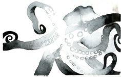 via An Octopus a Day by Rupa DasGupta. www.anoctopusaday.com