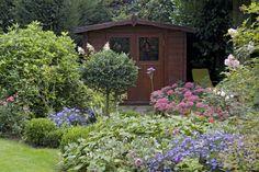 Gartenhaus mit Astern und Fetthennen