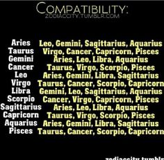 Gemini friendship/relationship compatibility
