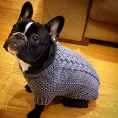 separation shoes 76aef eb047 Basket Weave Cable Knit Dog Sweater with harness opening - Grey, Sage, Red  or Rose - - French Bulldog
