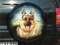 dog on car