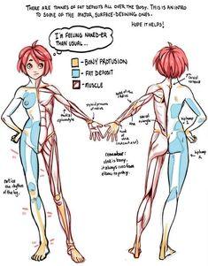 Tutorial Anatomy: Muscle, Fat, and Bone 1 by rinayun - Hentai Foundry Human Anatomy Drawing, Female Drawing, Human Figure Drawing, Figure Drawing Reference, Body Reference, Body Drawing, Anatomy Reference, Art Reference Poses, Human Anatomy Female