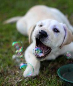#mit seifenblasen