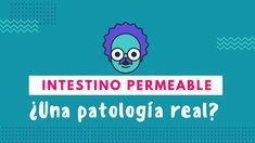 ¿Es el Síndrome de Intestino Permeable una patología real? ¡Descúbrelo! Intestino Permeable